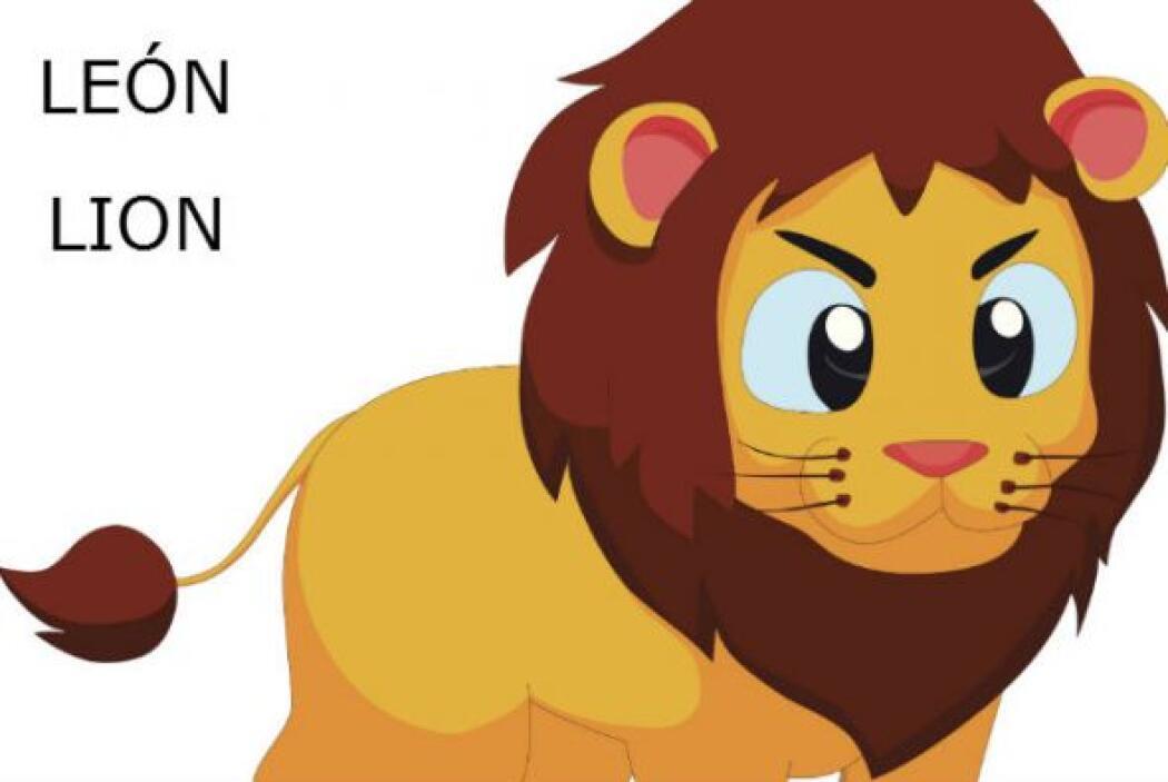 """LE""""N - LION"""
