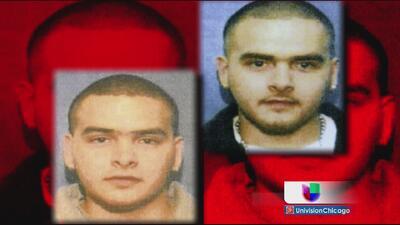 Piden sentencias poco severas para capos mexicanos en Chicago