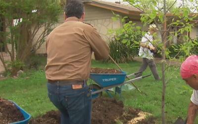 Continúan las labores de limpieza luego de los tornados en San Antonio