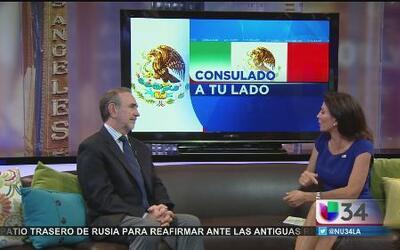 Consulado ofrece clases de ingles desde casa