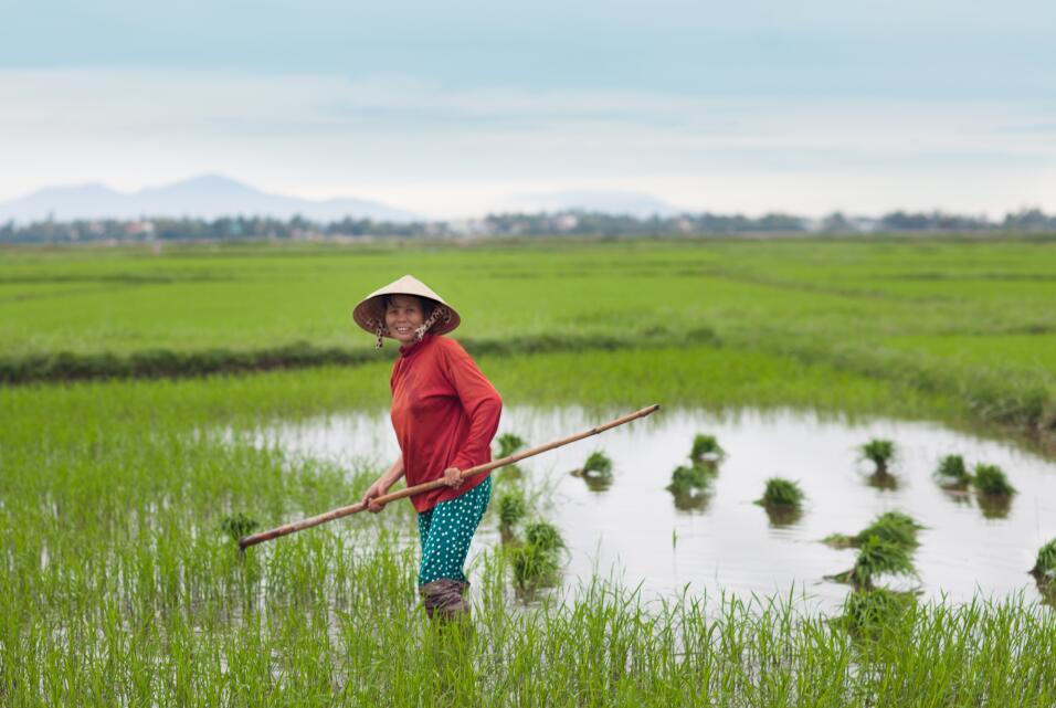 Así se ven las mujeres bellas alrededor del mundo qfb - Hoi An3- Vietnam...