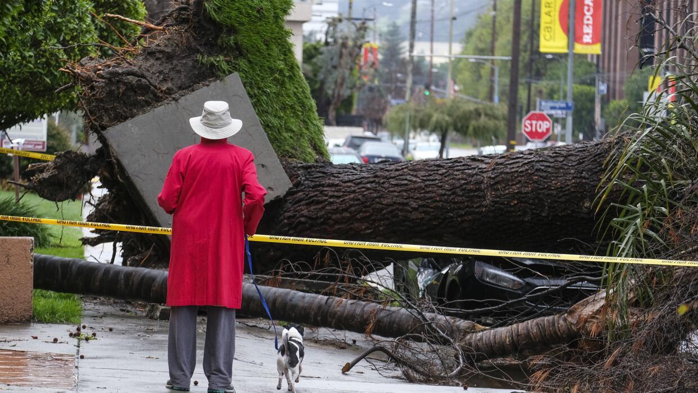 Una mujer en la zona de Sherman Oaks observa los daños que dej&oa...