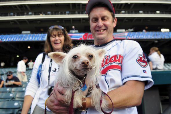¡Hasta el perro disfruta de un buen partido!