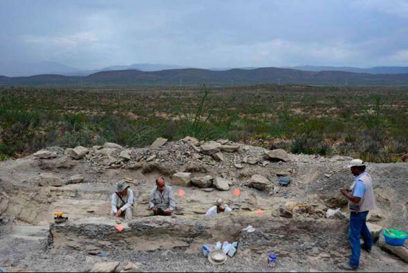 El hallazgo ocurrió en un yacimiento de Coahuila (norte del pa&ia...