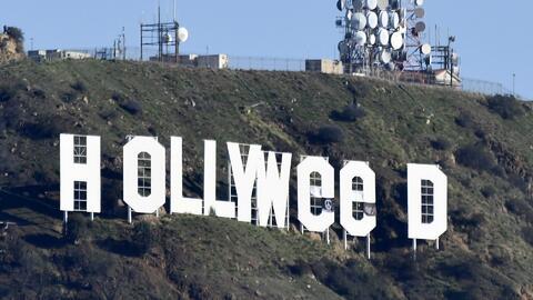 Se entregó el sospechoso de cambiar el letrero de Hollywood por Hollywee...