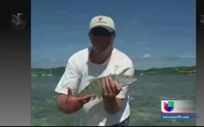 Intento por levantar pesca recreativa en Puerto Rico
