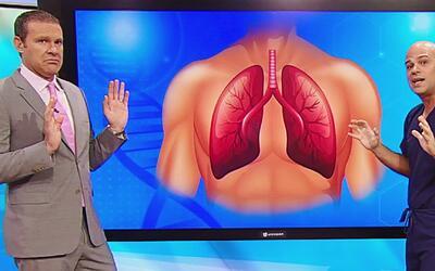 ¿Qué relación tiene comer carbohidratos con el cáncer de pulmón? Descúbr...