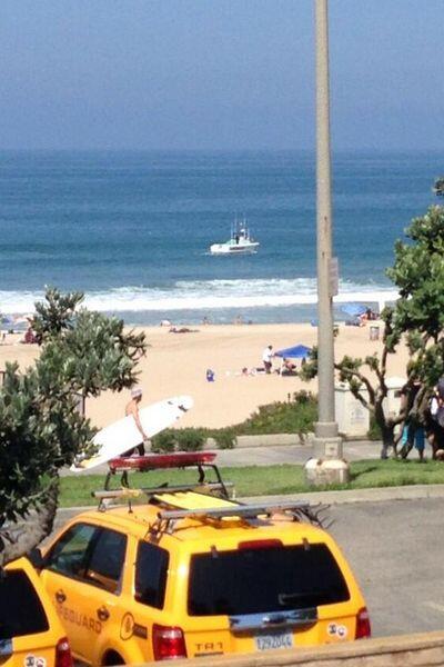 De acuerdo con las autoridades, Robles fue atacado por un tiburón...