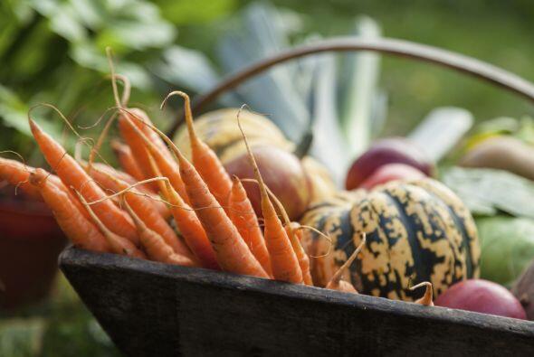 También se puede agregar zanahoria, melón y calabaza a su...