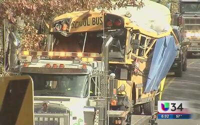 Cinco niños mueren al estrellarse un autobús escolar con un árbol en Ten...