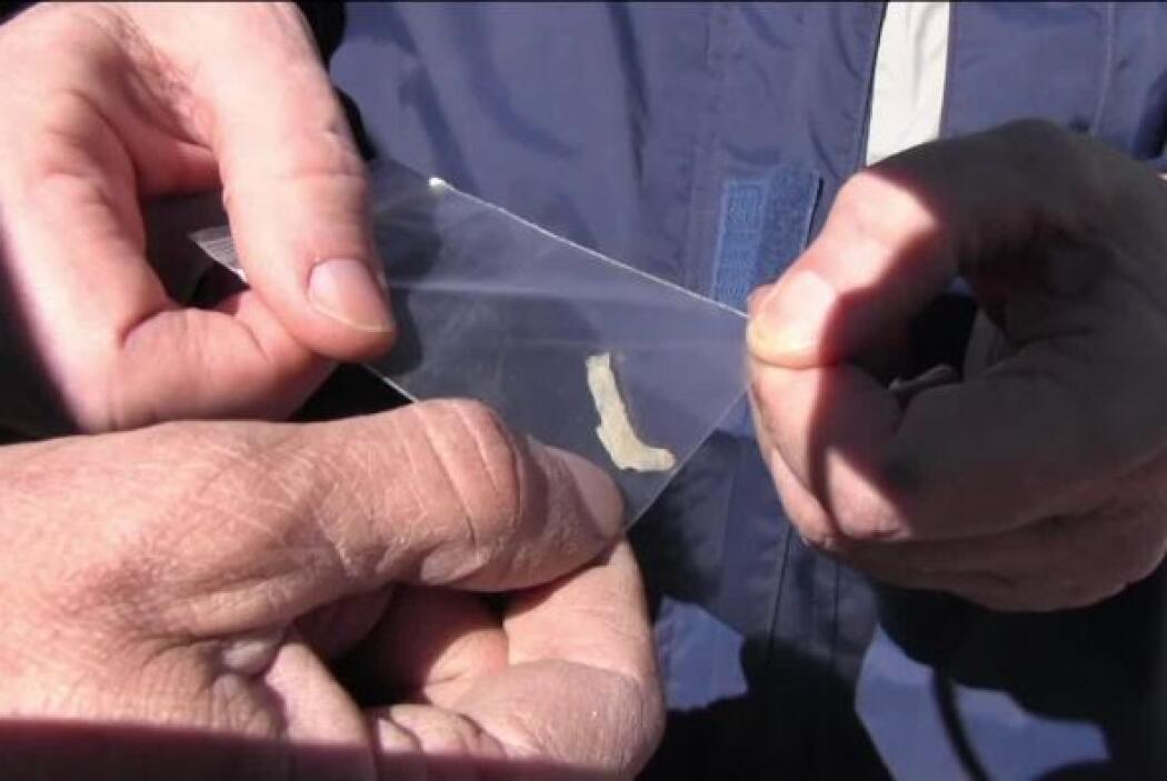 El equipo de Jaime Maussan y expertos en ovnis encontraron un pedazo met...