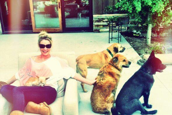 Su amor por los animales es tan grande que por eso tiene una gran famili...