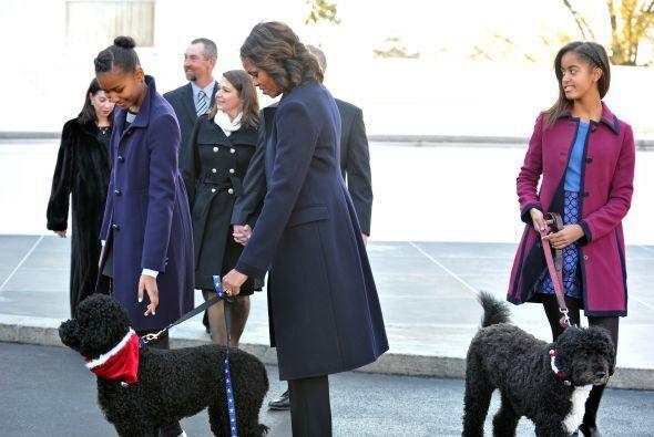 Hace unos días, toda la familia Obama con los perritos. Mira aquí los vi...