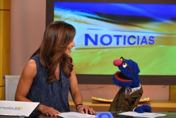 ¡Cuidado, Satcha! ¡Grover te quiere quitar el puesto en Despierta América!