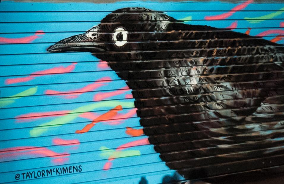 Guía de aves en los grafitis de Nueva York 17%20MikeFernandez_Blackbird.jpg