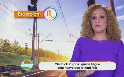 Mizada Escorpión 31 de mayo de 2016