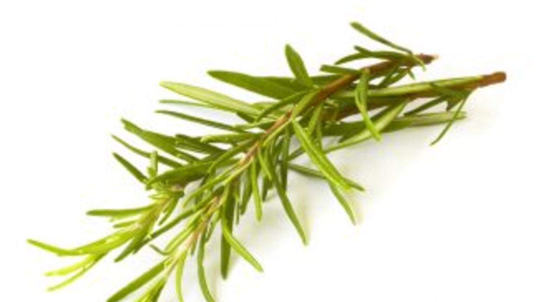 Es perfecto para aromatizar aceites y vinagres.