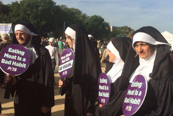 Activistas a favor de derechos de los animales, vestidos como monjas. (F...