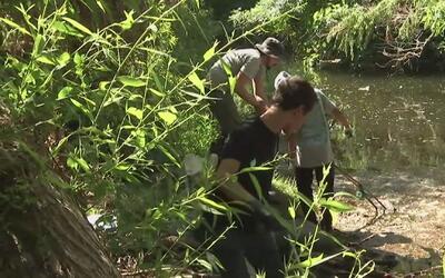 Decenas de voluntarios colaboran con la limpieza de las áreas del Río de...