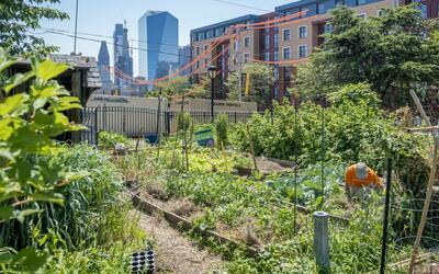 Un jardín comunitario en Filadelfia.