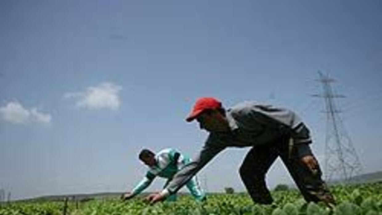 Latinos enfrentan barreras en centros de entrenamiento de empleos, según...