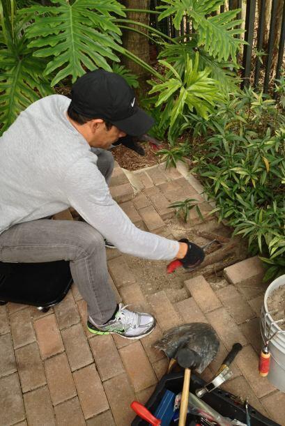 Johnny Lozada tuvo un fin muy movido. Primero arregló su jardín.