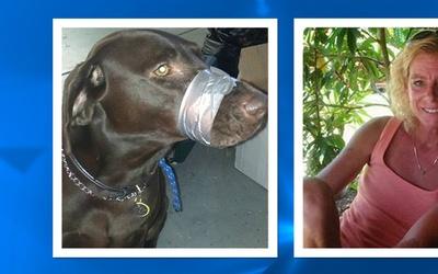 FL: Acusada de crueldad animal tras publicar foto de perro amordazado