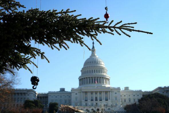 Las luces del árbol se encenderán en una ceremonia que se...