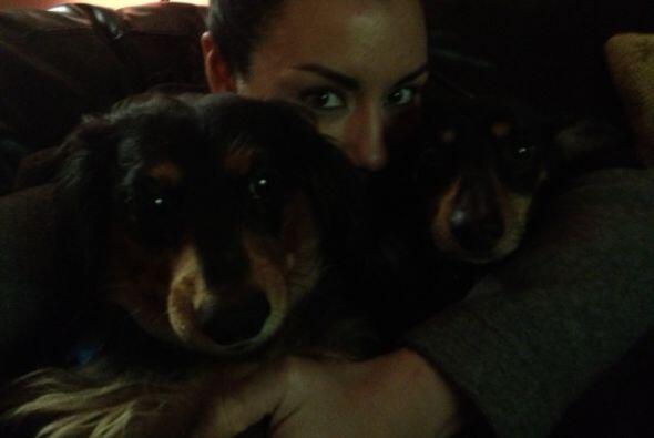 Jessica Mason nos compartió esta tierna imagen con sus perros. Re...