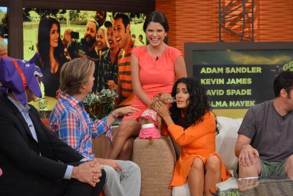 Salma quería robarle a Ana Patricia el amor de 'Honey'.
