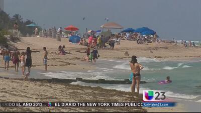 Turista de Nueva York muere ahogada en Miami Beach