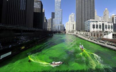 El Desfile del Día de San Patricio se celebró en Chicago para homenajear...