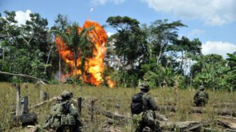Las autoridades antinarcóticas de la República Dominicana incineraron ce...