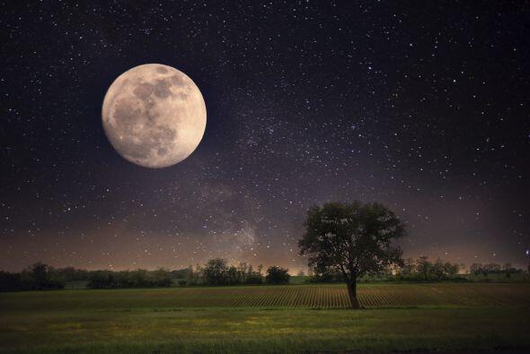 Cáncer Tu regente es la Luna, nuestro satélite Las emociones, la sensibi...