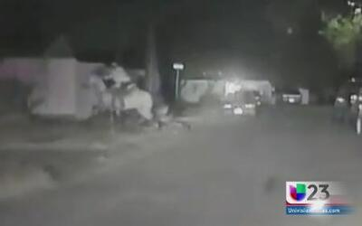 Policía persiguió a vaquero en su caballo