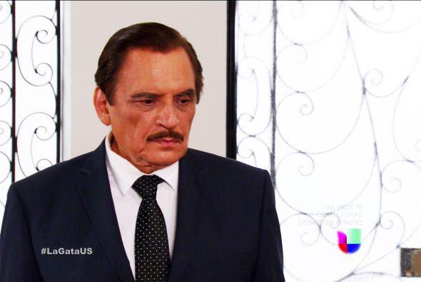 Don Fernando, no descanse hasta encontrar al amor de su vida, est&aacute...