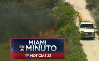 'Miami en un Minuto': 2,500 acres han sido devorados por un incendio for...
