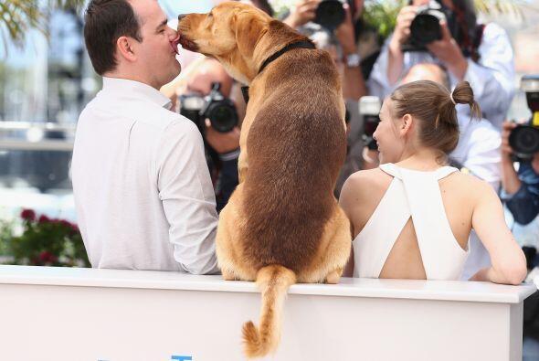 En el 'film' Hagen es un perro de la calle, que ha sido víctima d...