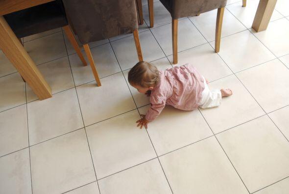 Los primeros gateos. Para muchos bebés, el gateo es una habilidad...