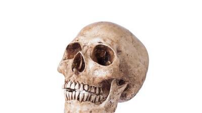Las autoridades siguen investigando el cráneo donado a Goodwill, y ahora...