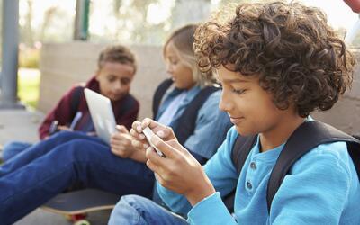 Mientras un 82% de la población en los países desarrollados usa internet...