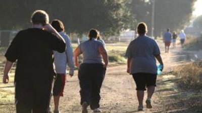 El Departamento de Estado de Estados Unidos considera que la obesidad es...