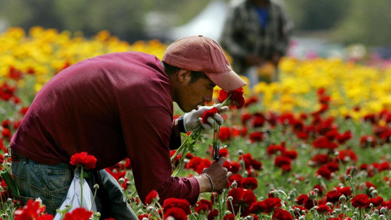 Trabajadores inmigrantes respaldados en Nueva York