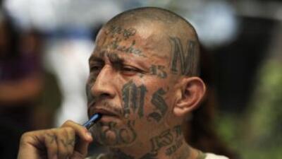 """Un miembro de las temidas pandillas conocidas como """"Maras""""."""