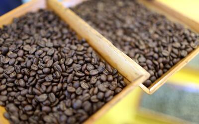 El café puede prevenir el cáncer