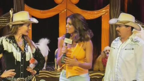Increíble espectáculo trajo Francisca desde la carpa del circo Hermanos...