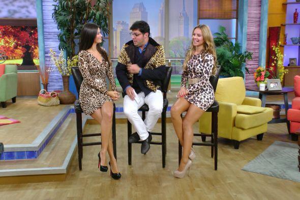 Se transformaron en una leoparda, una tigresa y un león para darnos dato...
