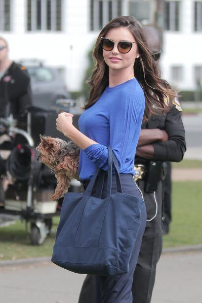 Esta no es la primera vez que Miranda aparece con Frankie en los brazos,...