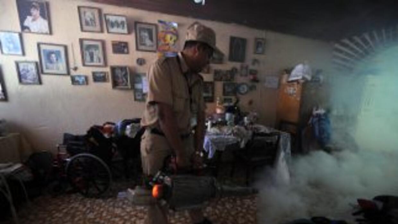 Guatemala ha registrado en lo que va de año 361 casos de dengue, 16 de e...