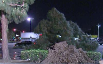 Ráfagas de viento que azotan al sur de California ya están causando estr...